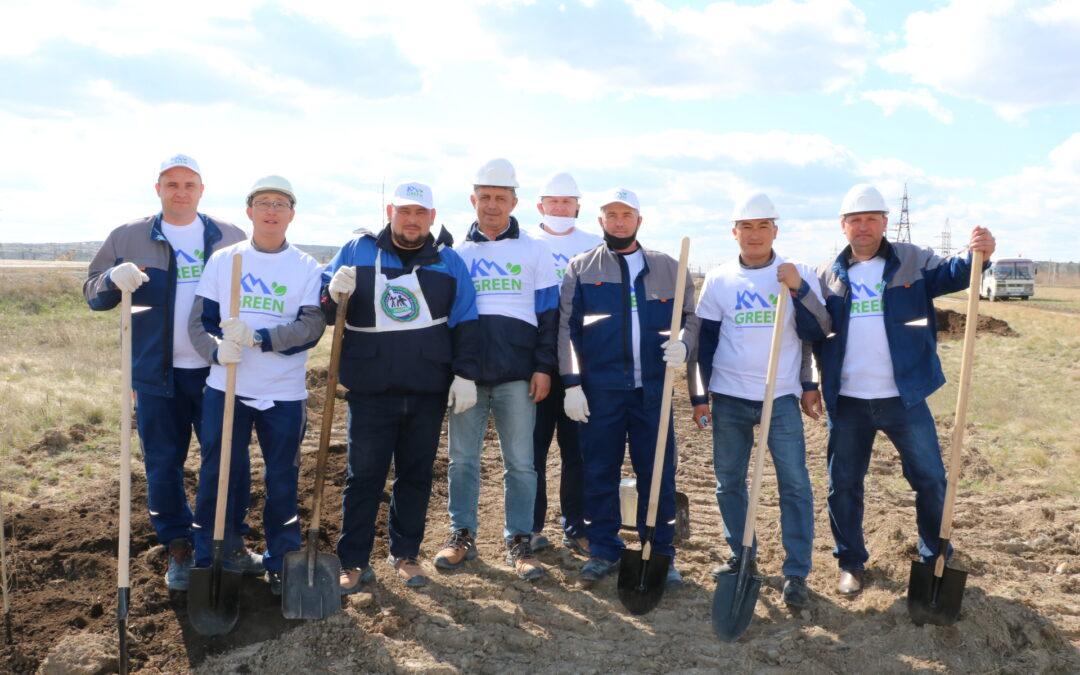 Более 1000 деревьев высадили сотрудники АО «Костанайские минералы»